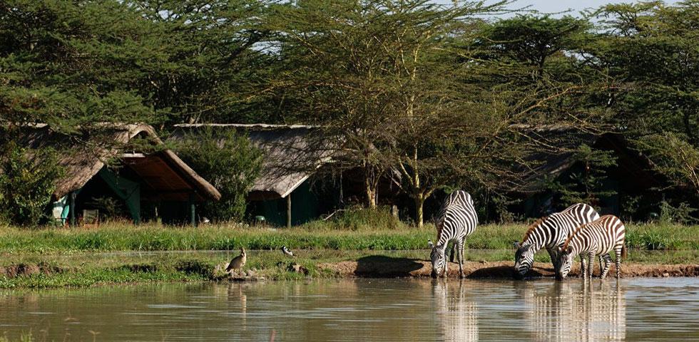 8 Days 7 Nights Aberdares / Samburu/ Sweet Water / Lake Nakuru / Masai Mara Safari Package