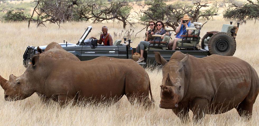 Kenya Tanzania Safari Packages