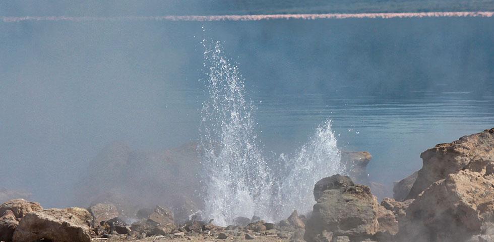 Lake Bogoria Day Trip